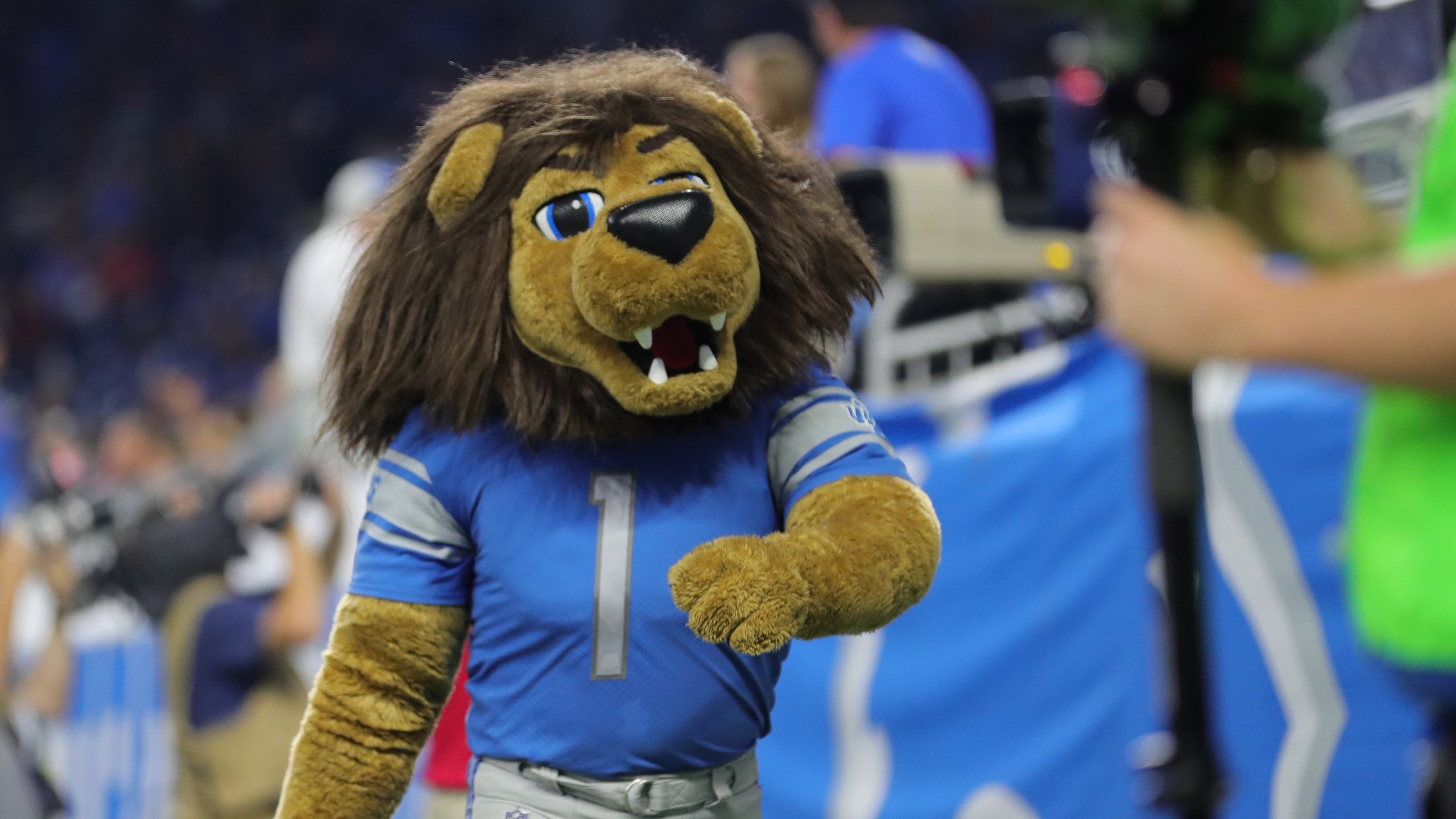 Detroit Lions Football Education Roary Guidelines