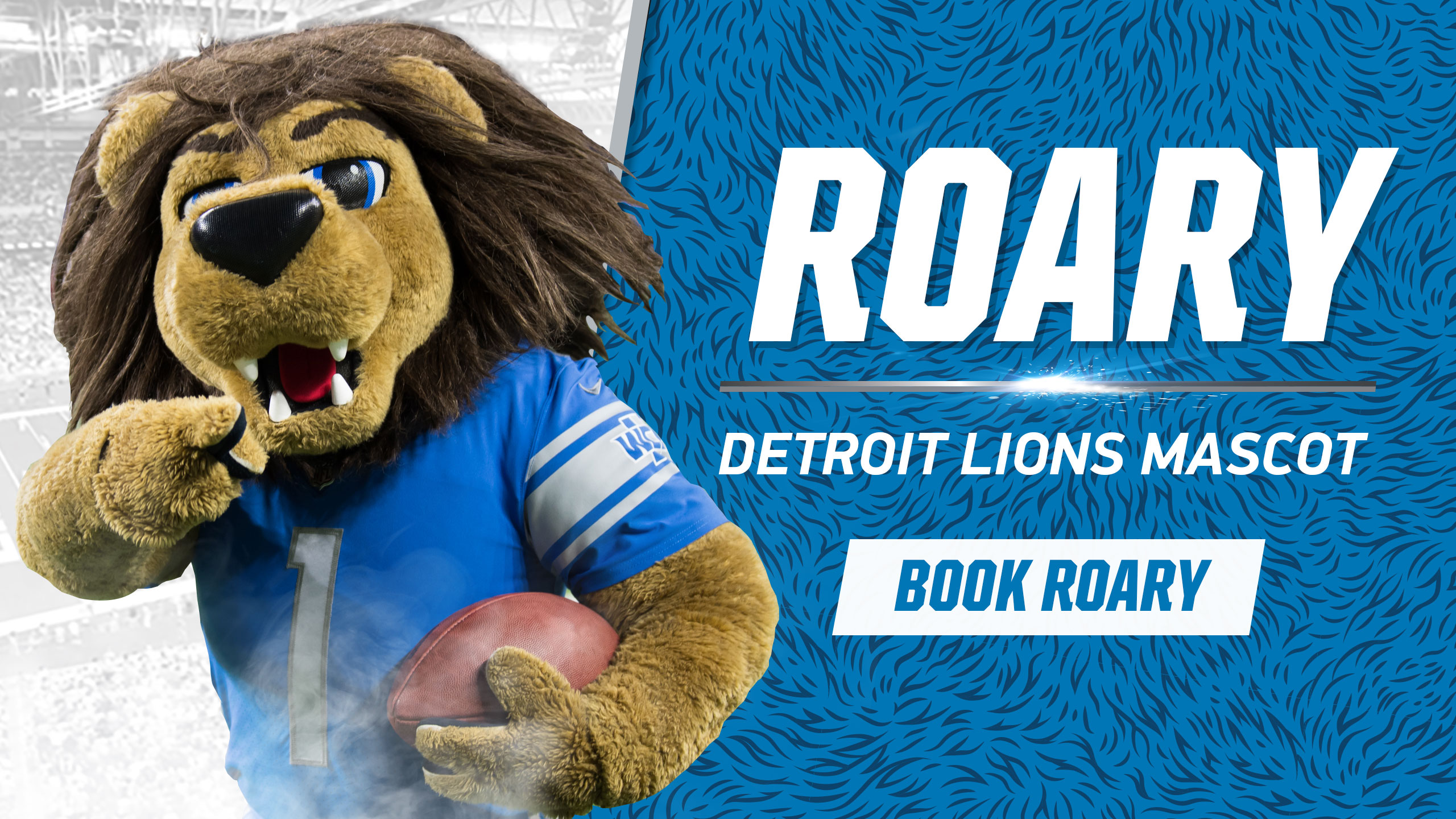 Detroit Lions Football Education Roary Detroit Lions