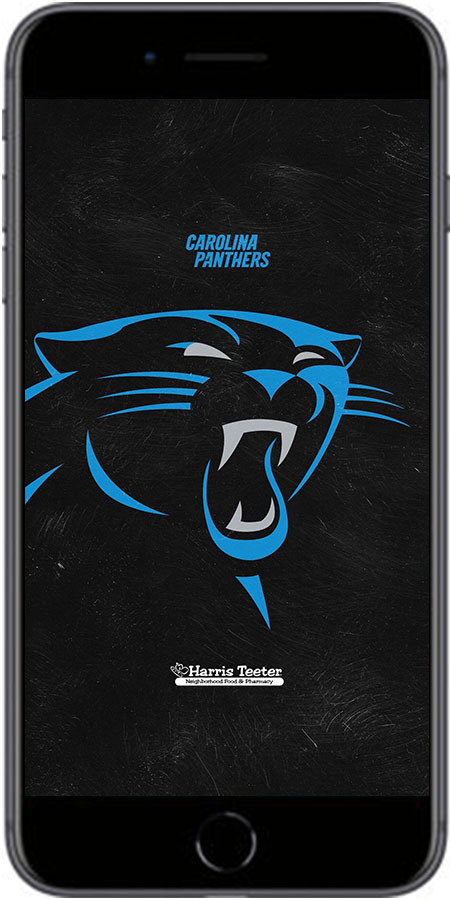 ade5c5cf Mobile Ticket Guide | Carolina Panthers - Panthers.com