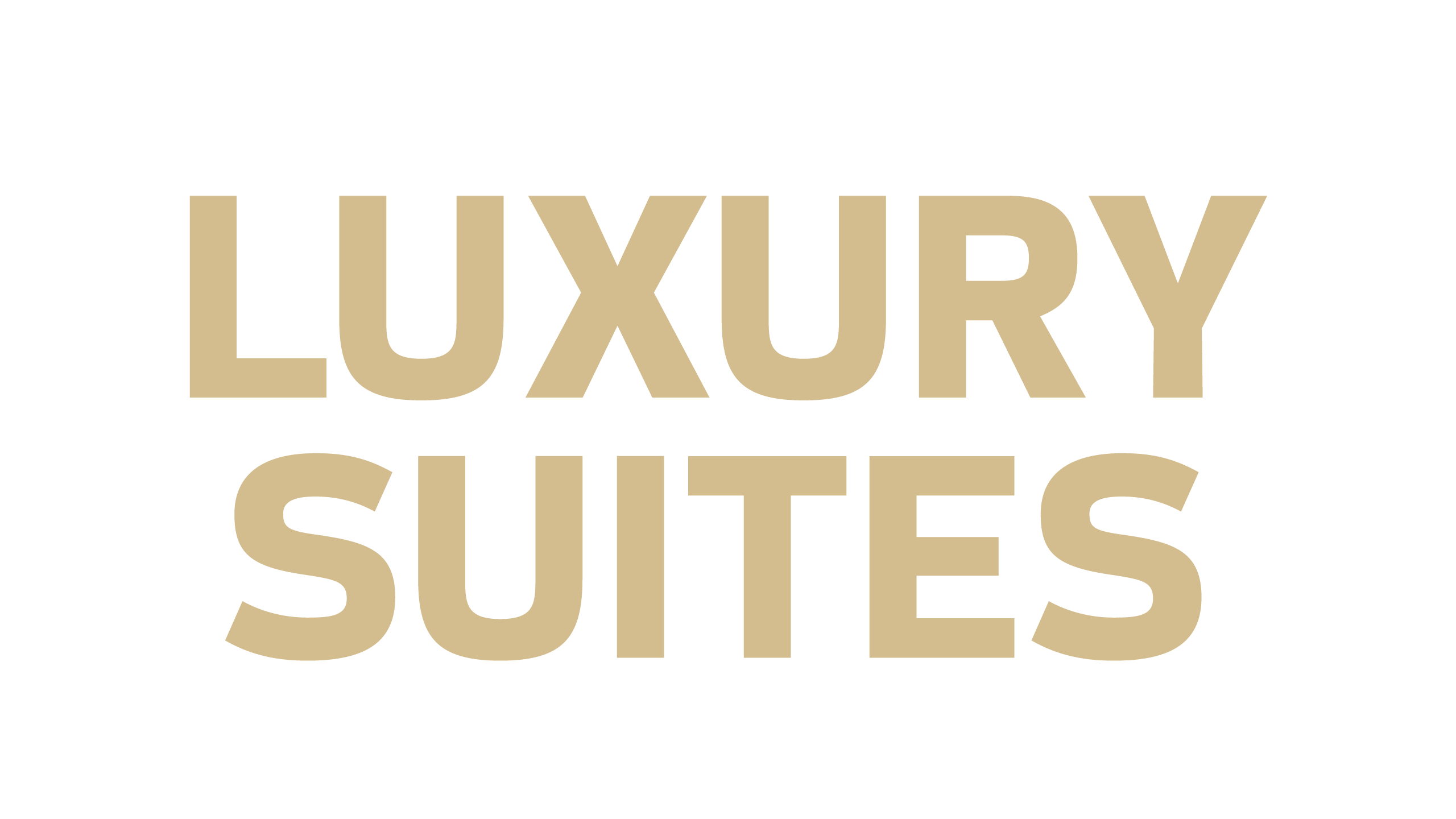 Annual suite holders enjoy the ultimate game day experience