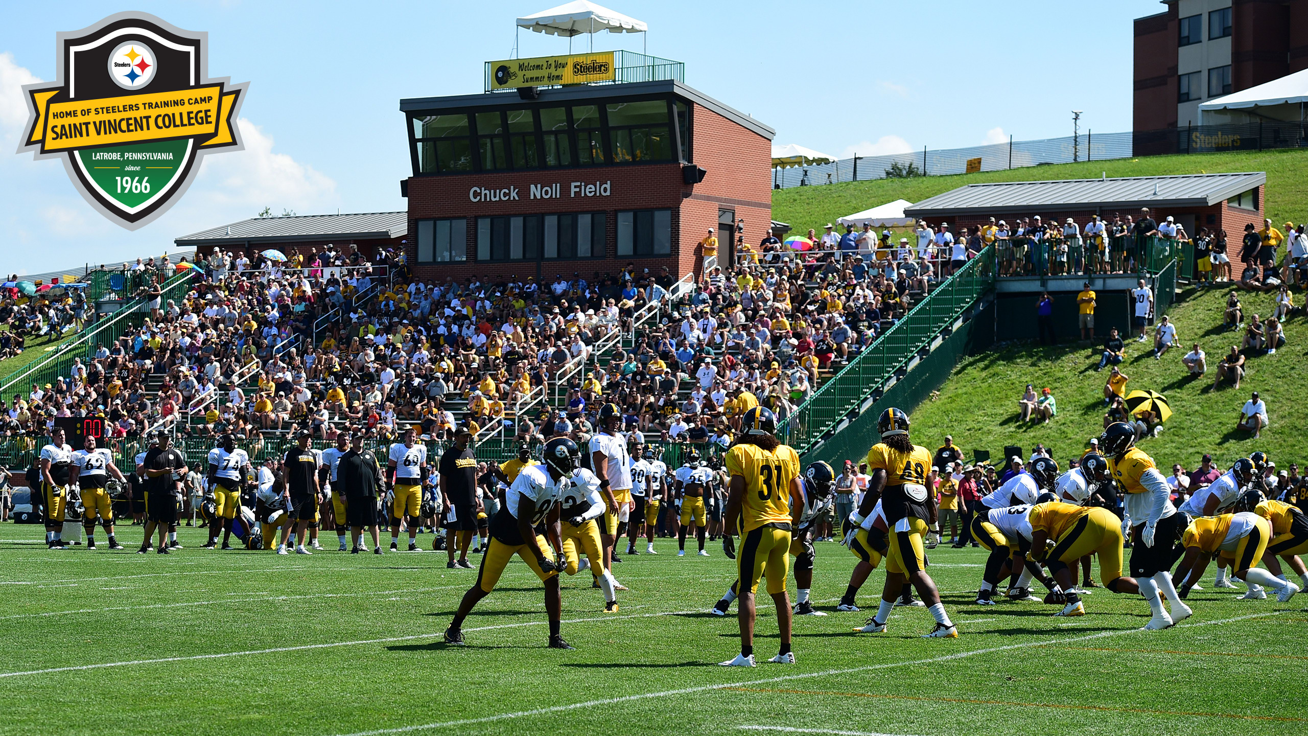 Steelers Training Camp  9b55422df