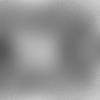 COW_20_giants-web