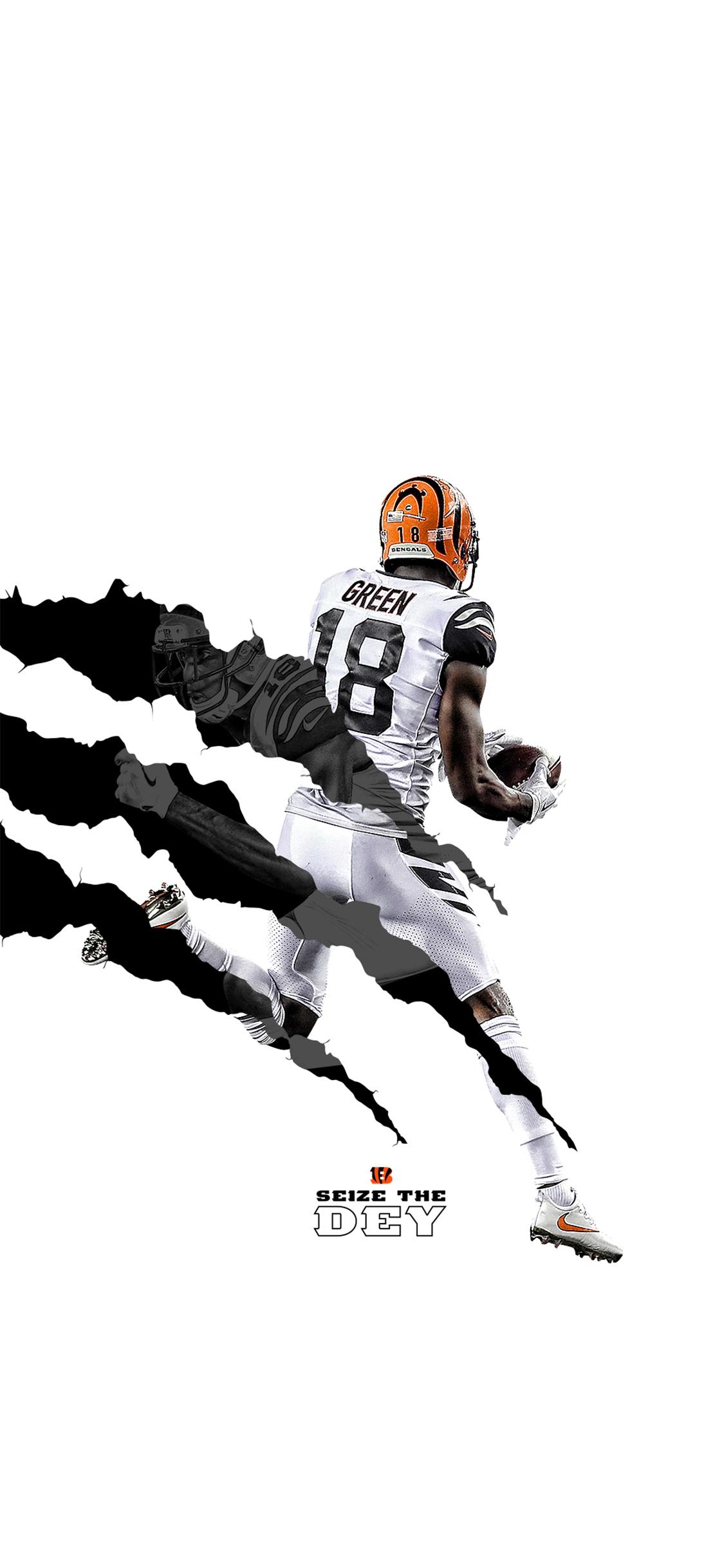 Cincinnati Bengals Fans 2018 Wallpaper Bengals Com